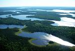 Birds Eye View of Buck Lake